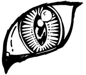 Tigers Eye Decal / Sticker