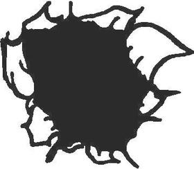Hole Decal / Sticker