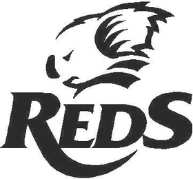 Queensland Reds Decal / Sticker