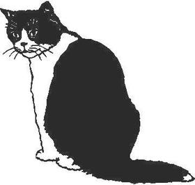 Cat Decal / Sticker 02