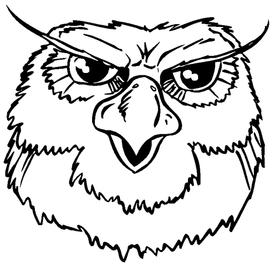 Owls Mascot Decal / Sticker 2