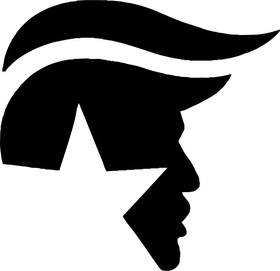 TRUMP Decal / Sticker 13