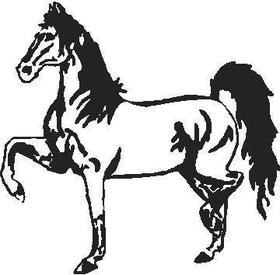 Horse Decal / Sticker 07