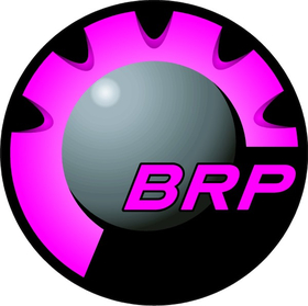Pink BRP Decal / Sticker 09