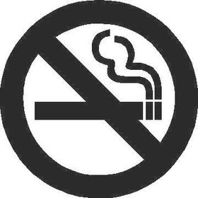No Smoking Decal / Sticker