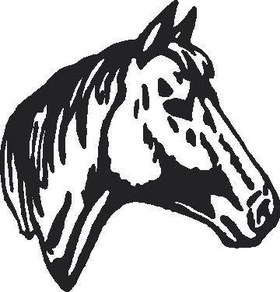 Horse Head Decal / Sticker