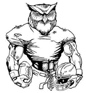 Football Owls Mascot Decal / Sticker 6