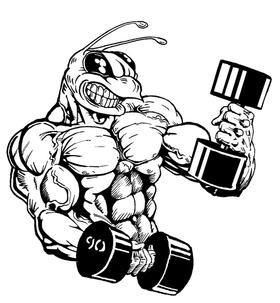 Weight Training Hornet, Yellow Jacket, Bee Mascot Decal / Sticker 5