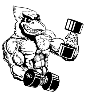 Weightlifting Cardinals Mascot Decal / Sticker 5
