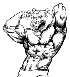 Weight Lifting Bears Mascot Decal / Sticker 02