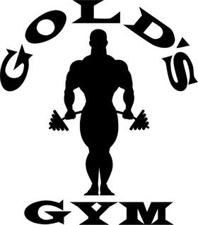 Gold's Gym Decal / Sticker 03