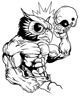 Football Owls Mascot Decal / Sticker 4
