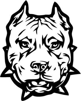 Pitbull Decal / Sticker 09