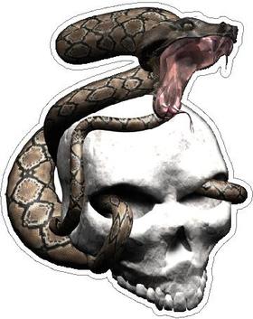 Snake Skull Decal / Sticker 04