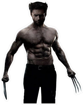 X-men Wolverine Decal / Sticker 08