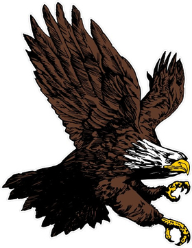 Attack Eagle Decal / Sticker 13