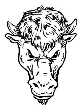 Buffalo Head Mascot Decal / Sticker hd2