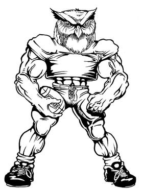 Football Owls Mascot Decal / Sticker 3