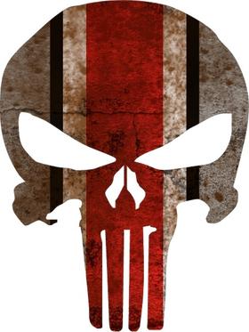 Ohio State Weathered Punisher Decal / Sticker 39