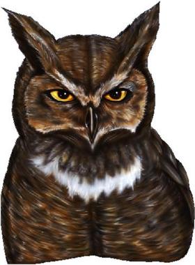 Owl Decal / Sticker 03