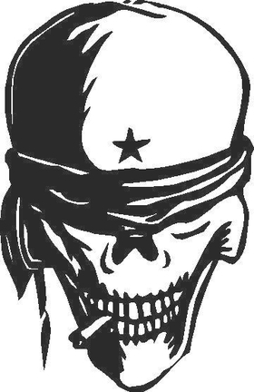 Skull Decal / Sticker G2