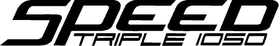 Triumph Speed Triple 1050 Decal / Sticker 44