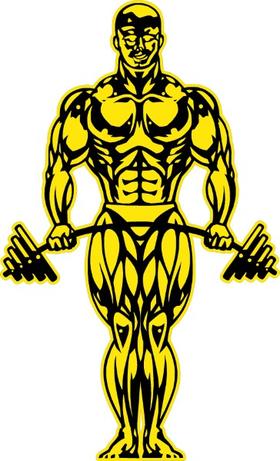 Gold's Gym Decal / Sticker 07