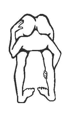 Head Up Ass Decal / Sticker