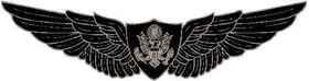 AirCrew Wings 02 Decal / Sticker