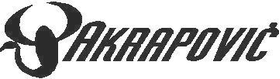 Akrapovic 03 Decal / Sticker