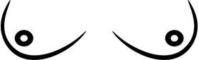 Titties Decal / Sticker 01
