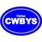 Dallas Cowboys Oval Decal / Sticker