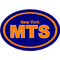 New York Mets Oval Decal / Sticker