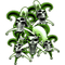 Green Jester Skulls Decal / Sticker