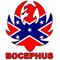 Confederate Flag Hank Williams Jr. Bocephus Decal / Sticker 08